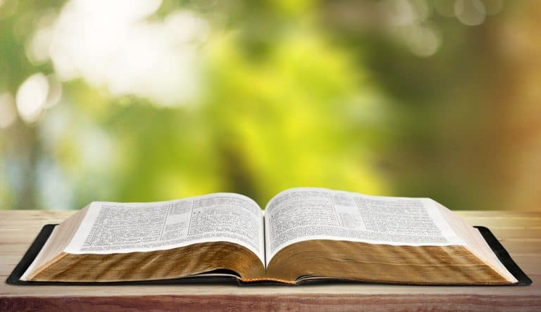 Is the Bible a Primary Source of Information?